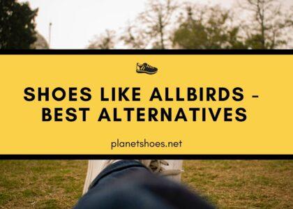 PS-shoes-like-allbirds-best-alternatives